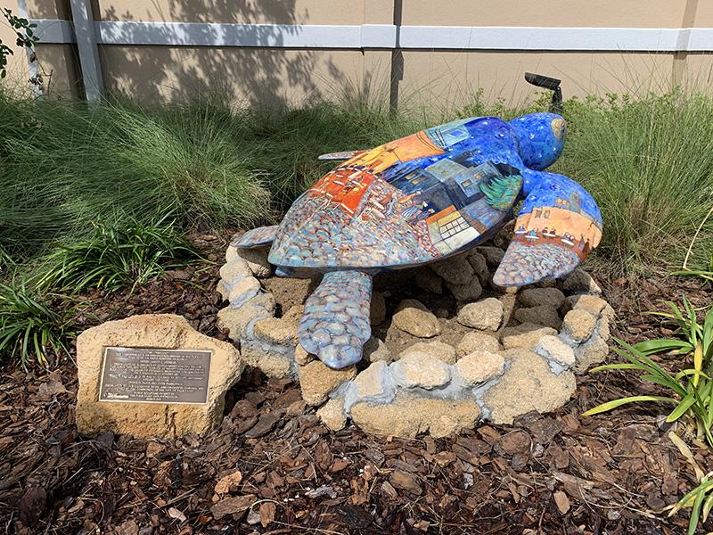Turtle Vincent