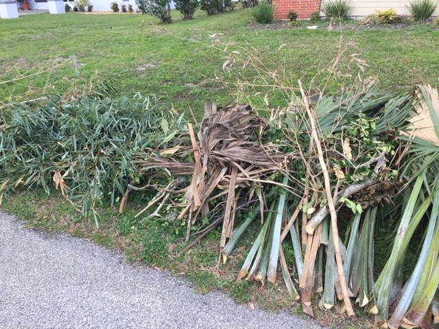 Yard Waste is stacked neatly, Waste Pro will Remove