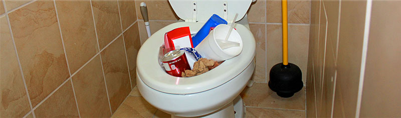 It's a TOILET, Not a Trashcan!
